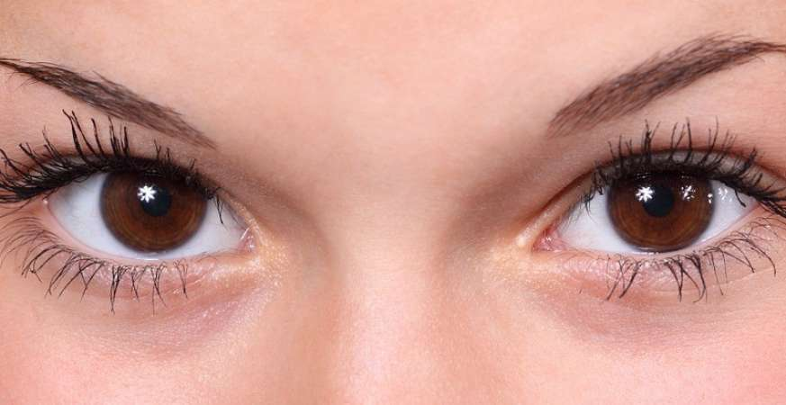 Eyes As a Mirror of the Soul